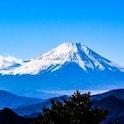 【徹底比較】静岡でおすすめの結婚相談所はここ!費用・安全性・評判まとめ