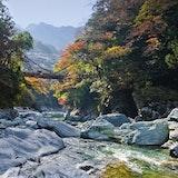 【口コミあり】徳島でおすすめの人気結婚相談所ランキング!料金・コースを徹底比較